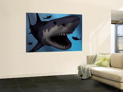 A Megalodon Shark from the Cenozoic Era-Stocktrek Images-Wall Mural