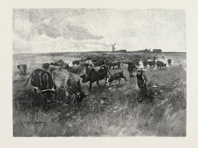 A Mennonite Girl Herding Cattle, Canada, Nineteenth Century--Giclee Print