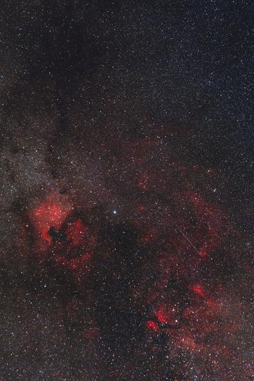 A Meteor Streaks the Sky Against the Milky Way and the Rich Nebula Field in Cygnus-Babak Tafreshi-Photographic Print