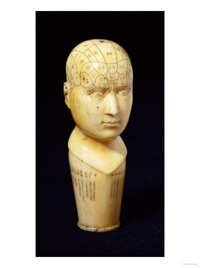 A Mid 19th Century Ivory Cane Handle Shaped as a Phrenology Bust--Giclee Print