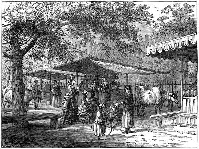 A Milk Fair, St James's Park, London, 1891-J Greenaway-Giclee Print