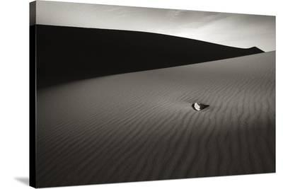 A Moment in Time III-Hakan Strand-Stretched Canvas Print