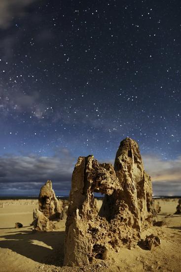 A Moonlit Night Above the Pinnacles Natural Formations in Nambung National Park-Babak Tafreshi-Photographic Print