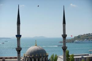 A Mosque in Istanbul of Turkey