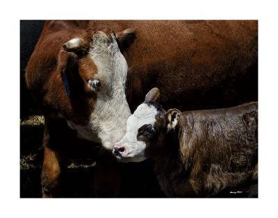 A Mother?s Love-Barry Hart-Art Print