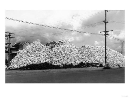 A Mountain of Oyster Shells View - South Bend, WA-Lantern Press-Art Print