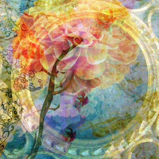 A Multicolor Translucent Floral Montage of a Dahlia-Alaya Gadeh-Photographic Print
