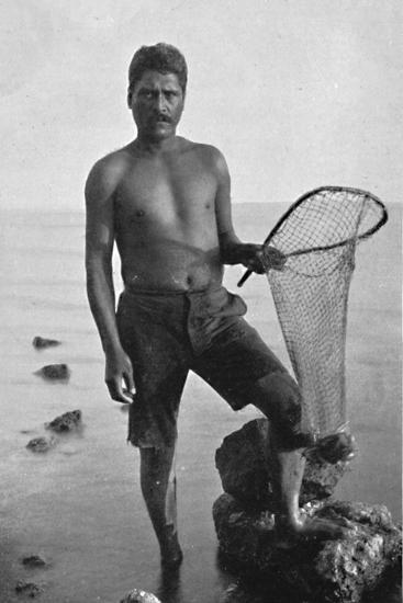 A native shrimper, Hawaii, with his net, 1902-Unknown-Photographic Print