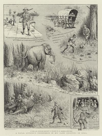 A Naval Officer's Experience in Big Game Shooting in India-William Ralston-Giclee Print