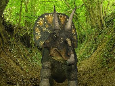 A Nedoceratops Wanders a Cretaceous Forest-Stocktrek Images-Photographic Print