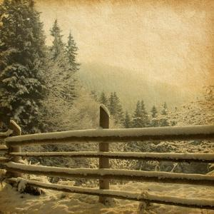 Retro Image Of Winter Landscape In The Carpathians Mountains. Vintage Paper by A_nella
