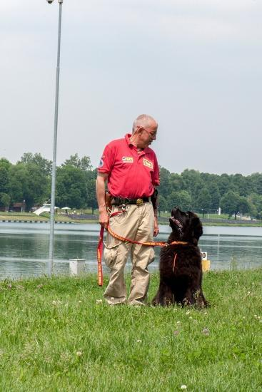 A Newfoundland Dog Trained for Rescue at Sea, with an Instructor at a Lake Near Milan-Lori Epstein-Photographic Print