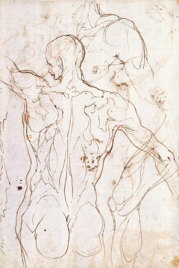 A Nude Seen from Behind, Looking to the Left, and Other Studies of His Left Shoulder and Right Leg-Perino Del Vaga-Giclee Print