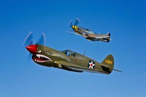 A P-40E Warhawk and a P-51D Mustang Kimberly Kaye in Flight