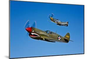 A P-40E Warhawk and a P-51D Mustang Kimberly Kaye in Flight
