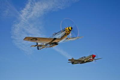 A P-51D Mustang Kimberly Kaye and a P-40E Warhawk in Flight--Photographic Print