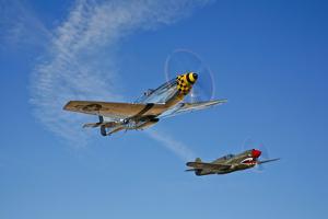 A P-51D Mustang Kimberly Kaye and a P-40E Warhawk in Flight
