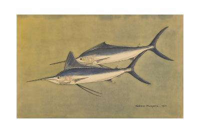 A Painting of a Pair of Carnivorous Marlins-Hashime Murayama-Giclee Print