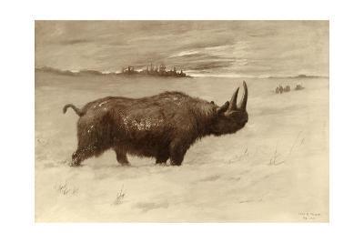 A Painting of a Woolly Rhinoceros Tichorhinus of the Pleistocene Age-Charles R. Knight-Giclee Print