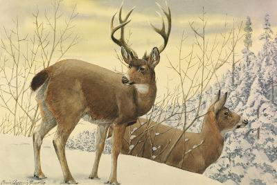 A Painting of Two Black-Tailed Deer Standing in the Snow-Louis Agassi Fuertes-Giclee Print