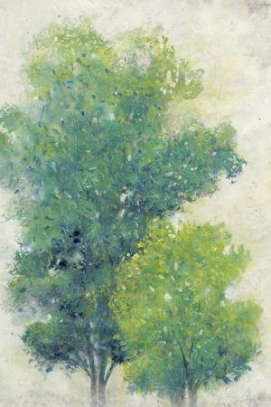 https://imgc.artprintimages.com/img/print/a-pair-of-trees-i_u-l-q19btox0.jpg?p=0