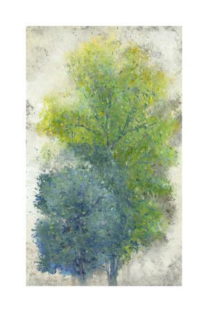 https://imgc.artprintimages.com/img/print/a-pair-of-trees-ii_u-l-q19btop0.jpg?p=0