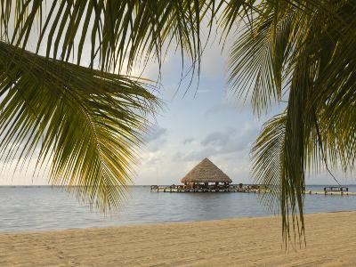 A Palapa and Sandy Beach, Placencia, Belize-William Sutton-Photographic Print