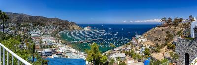A Panorama of Avalon on Catalina Island-Andrew Shoemaker-Photographic Print
