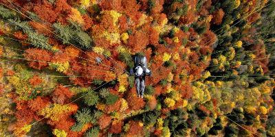 A Paraglider Flying over a Colourful Forest-Dietmar Stiplovsek-Photographic Print
