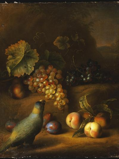 A Parrot with Grapes, Peaches and Plums in a Landscape-Tobias Stranover-Giclee Print