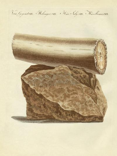 A Part of a Excavated Elephant Tusk Weapon--Giclee Print