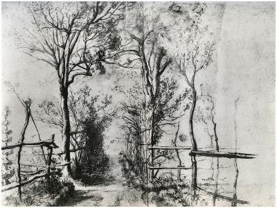 A Path Bordered by Trees, C1620-1625-Peter Paul Rubens-Giclee Print