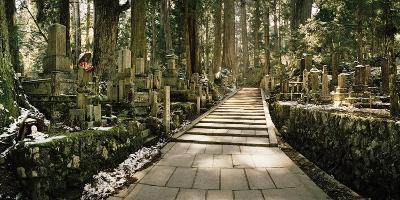 A Path Through Cedar Trees and Grave Markers at Okunoin Cemetery in Winter-Macduff Everton-Photographic Print