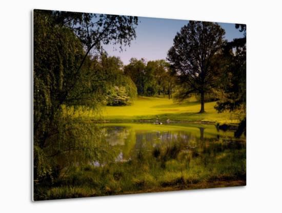 A Peaceful Rural Scene with Trees Lake, Green Grass and Blue Sky-Jody Miller-Metal Print