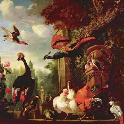A Peacock, Peahen and Other Exotic Birds and Poultry on a Terrace-Melchior de Hondecoeter-Giclee Print
