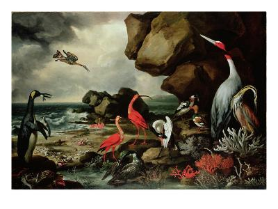 A Penguin, a Pair of Flamingoes, and Other Exotic Birds, Shells, and Coral on the Shoreline-Philip Reinagle-Giclee Print