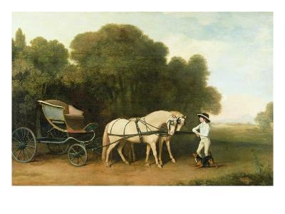 A Phaeton with a Pair of Cream Ponies in the Charge of a Stable-Lad, C.1780-5 (Oil on Panel)-George Stubbs-Giclee Print