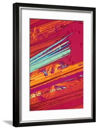 A Photomicrograph, a Picture Taken Through a Microscope, of Benzoic Acid-Cesare Naldi-Framed Photographic Print