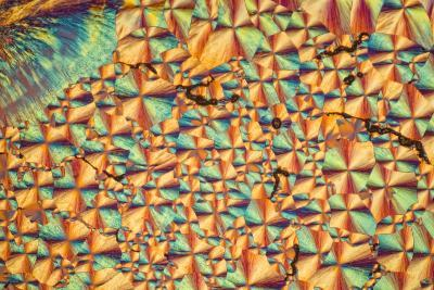 A Photomicrograph, a Picture Taken Through a Microscope, of Cholesterol Acetate-Cesare Naldi-Photographic Print
