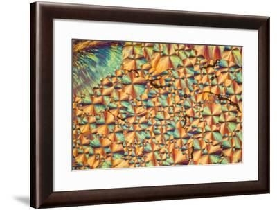 A Photomicrograph, a Picture Taken Through a Microscope, of Cholesterol Acetate-Cesare Naldi-Framed Photographic Print