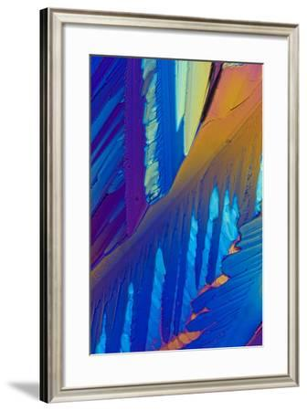 A Photomicrograph, a Picture Taken Through a Microscope, of Dextrose-Cesare Naldi-Framed Photographic Print