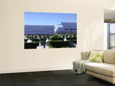 A Photovoltaic System of Solar Cells-Stocktrek Images-Wall Mural
