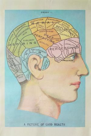 https://imgc.artprintimages.com/img/print/a-picture-of-good-health-vintage-cognitive-science-lithograph_u-l-q1gqa930.jpg?p=0