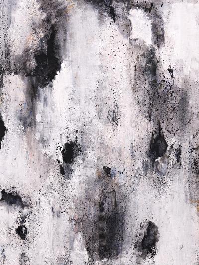 A Piebald Thought-Joshua Schicker-Giclee Print