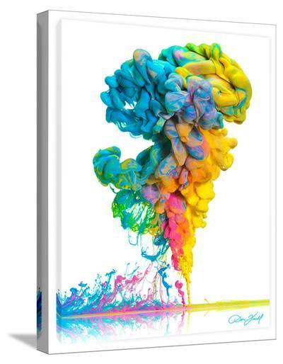 A Plume Of Many Colors-Don Farrall-Stretched Canvas Print