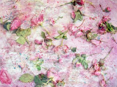 https://imgc.artprintimages.com/img/print/a-poetic-floral-montage-from-pink-roses-on-painted-texture_u-l-q11yl7a0.jpg?p=0