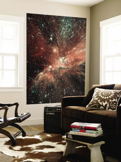 A Population of Infant Stars in the Milky Way Satellite Galaxy, the Small Magellanic Cloud--Wall Mural