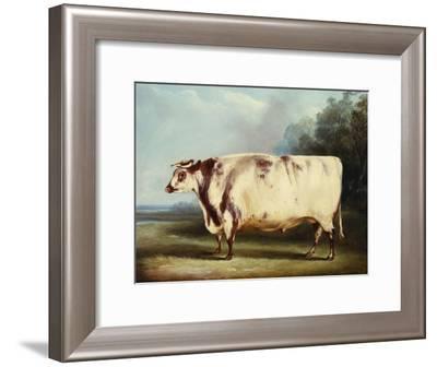 A Prize Bull-William Henry Davis-Framed Giclee Print