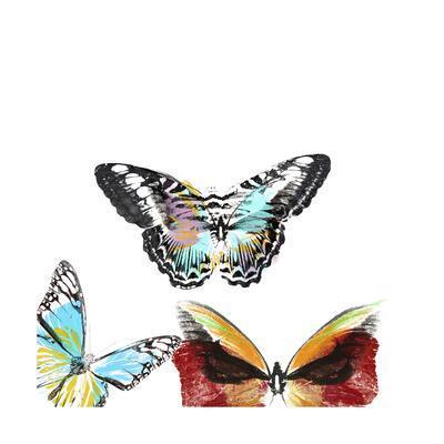 Butterflies Dance II