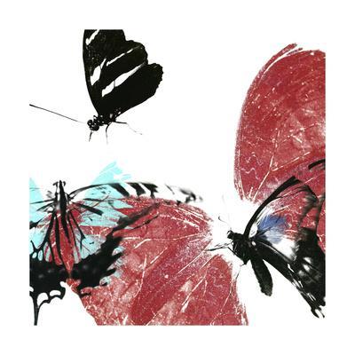 Butterflies Dance VIII